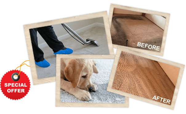 Services of Carpet Cleaning Montgomery TX